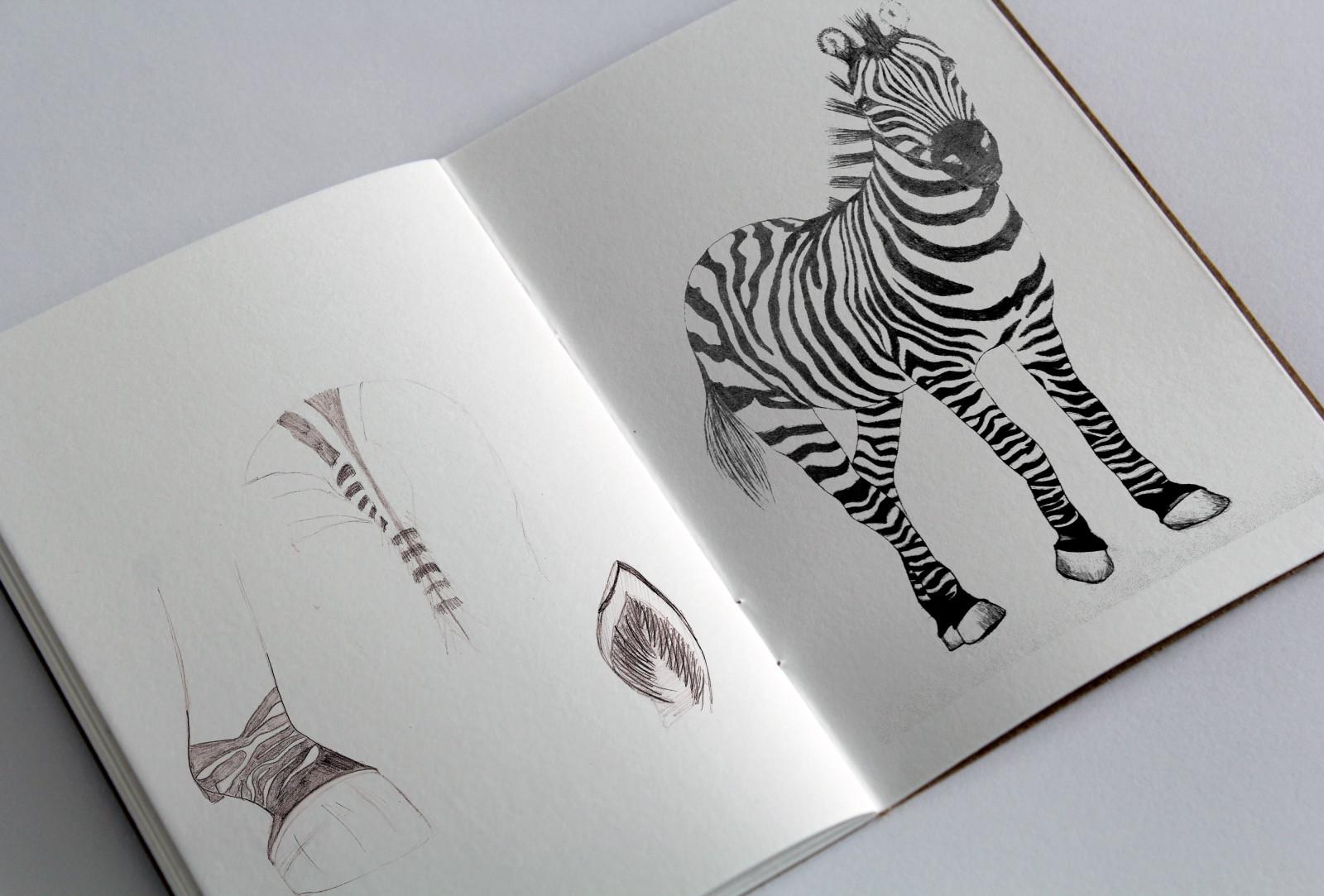 sketchbook_Zebra